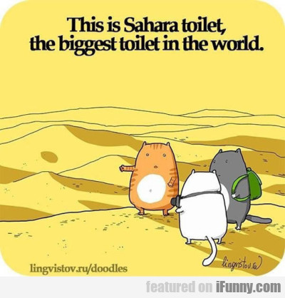 This Is Sahara Toilet, The Biggest Toilet In...