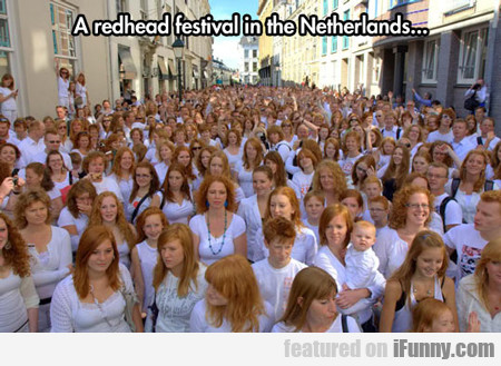 A Redhead Festival In The Netherlands...