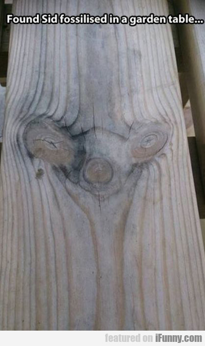 i found sid fossilized in a garden table...