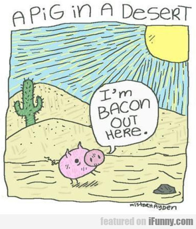 A Pig In The Desert...