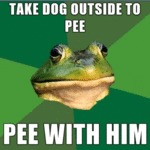 Take Dog Outside To Pee...