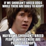 If We Shouldn't Breed Dogs While There Are Dogs...