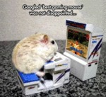 "Googled "" Best Gaming Mouse "" Was Not.."
