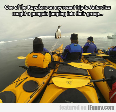 One Of The Kayakers On My Recent Trip...