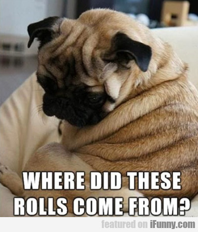 Where Did These Rolls Come From?