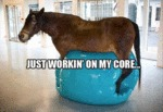 Just Workin' On My Core