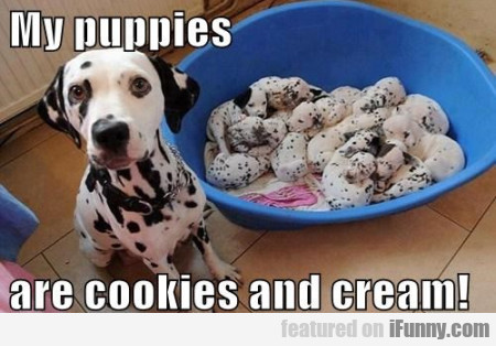 My Puppies Are Cookies And Cream