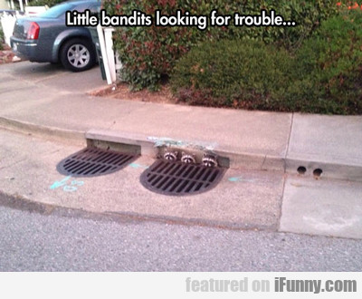 Little Bandits Looking For Trouble...