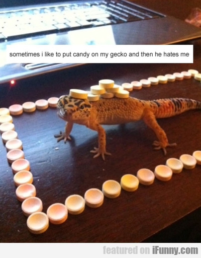 Sometimes I Like To Put Candy On My Gecko And..