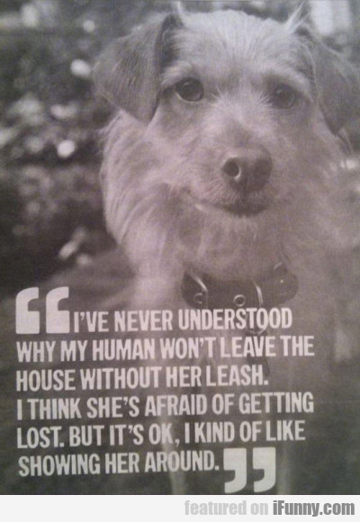 I've Never Understood Why My Human Won't Let..