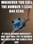 Whenever You Call The Number...