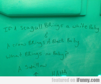 If A Seagull Brings A White Baby...