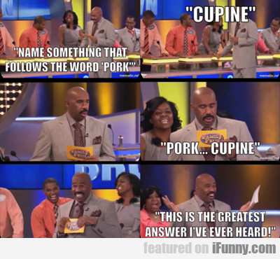 Name Something That Follows The Word Pork...