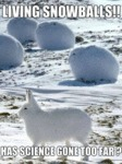 Living Snowballs! Has Science