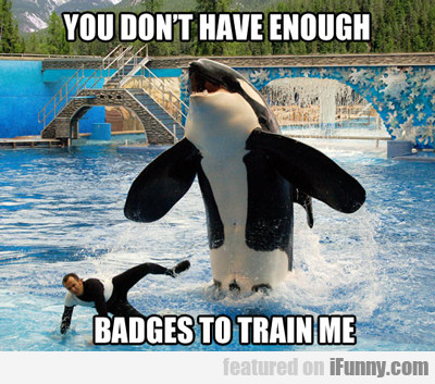 You Don't Have Enough Badges To Train Me...