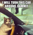 I Will Turn This Car Around, Dammit..