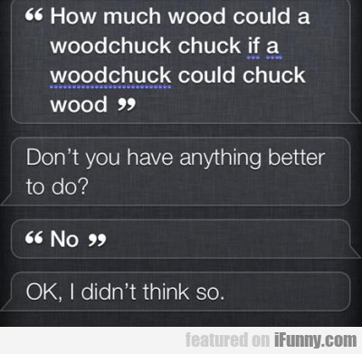 How Much Wood Could A Woodchuck Chuck...