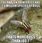The Amazon Rainforest Has 2.5 Million...