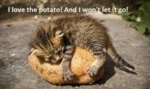 I Love The Potato. And I Won't Let It Go!