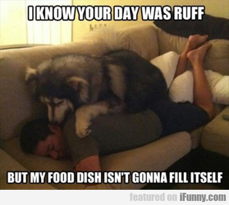 I Know Your Day Was Ruff But My Food Dish..