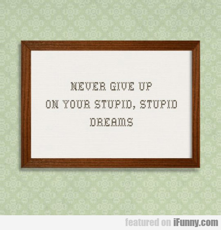 Never Give Up On Your Stupid
