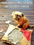 Your Parcel Has Cleared The Security Check