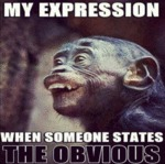 My Expression When Someone States
