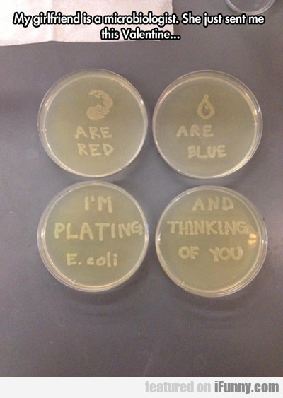 my girlfriend is a microbiologist...