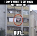 I Don't Want To Say Your Mother Is Fat...