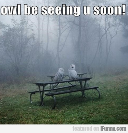 Owl Be Seeing You Soon