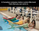A Canadian Company Make Custom...
