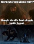 Hagrid, Where Did You Get Fluffy...