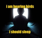 I Am Hearing Birds, I Should Sleep...