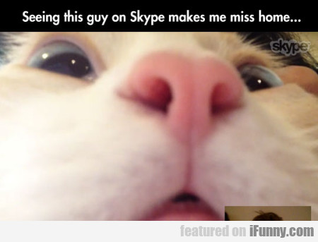 Seeing This Guy On Skype Makes Me Miss Home..