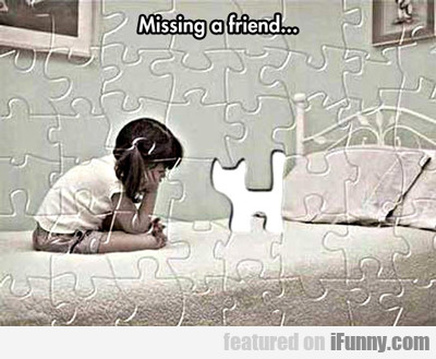 Missing A Friend...