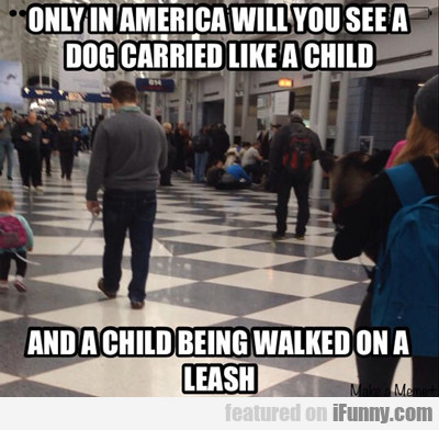 Only In America Will You See A Dog Carried Like...
