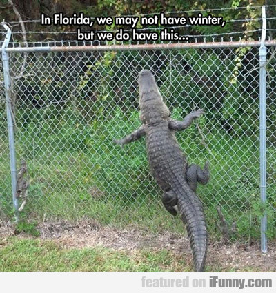 In Florida, We May Not Have Winter...