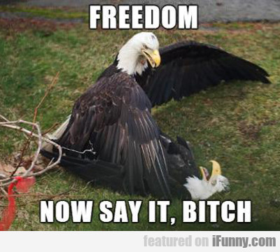 Freedom, Now Say It Bitch...