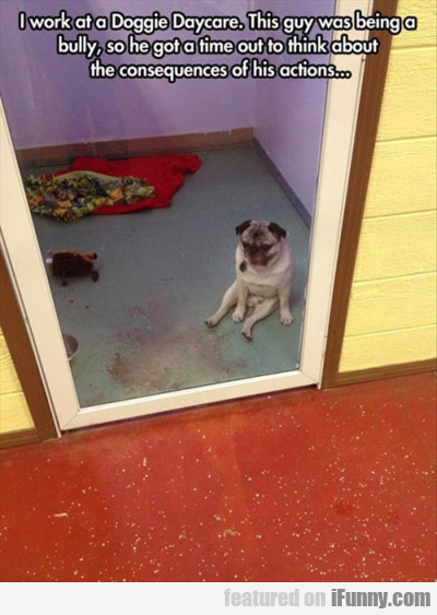 I Work At A Doggy Daycare. This Guy Was Being..
