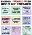 Things I Would Wish Upon My Enemies...
