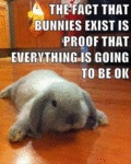 The Fact That Bunnies Exist Is The Proof That...