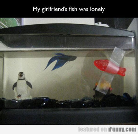 My Girlfriend's Fish Was Lonely...
