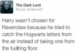 Harry Wasn't Chosen For Ravenclaw Because He..