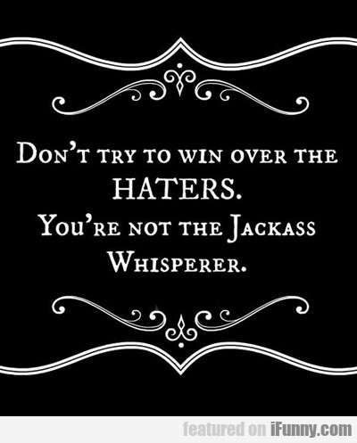 Don't Try To Win Over The Haters...
