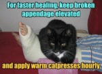 For Faster Healing, Keep Broken Appendage Elevated