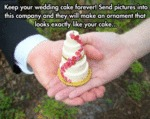 Keep Your Wedding Cake Forever...
