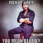 Pick Up Line? You Mean Beard?