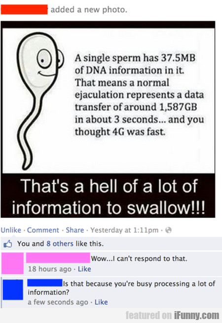 A Single Sperm Has 37.5 Mb Of Dna