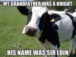 My Grandfather Was A Knight