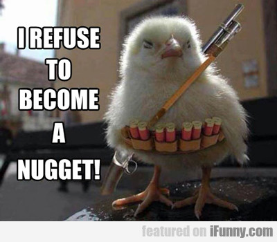 I Refuse To Become A Nugget...